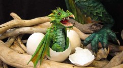 Paper Mache Seadragon baby- featured