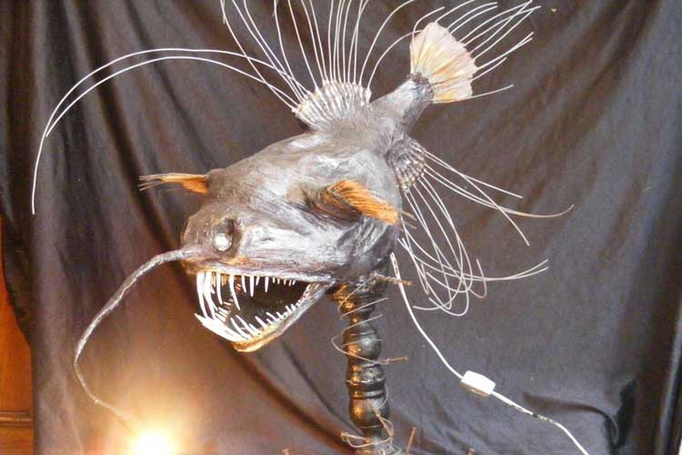 lena's paper mache deep sea animal