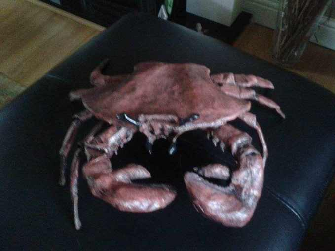 steve's paper mache crab