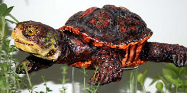 Lisas paper mache boxed turtle1