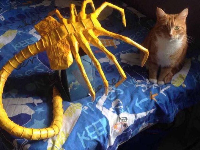 nilly and son's paper mache Face Hugger with cat