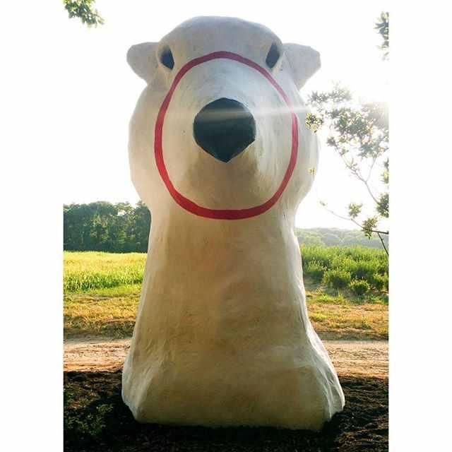 Inga Aleknaviciute's paper mache white bear