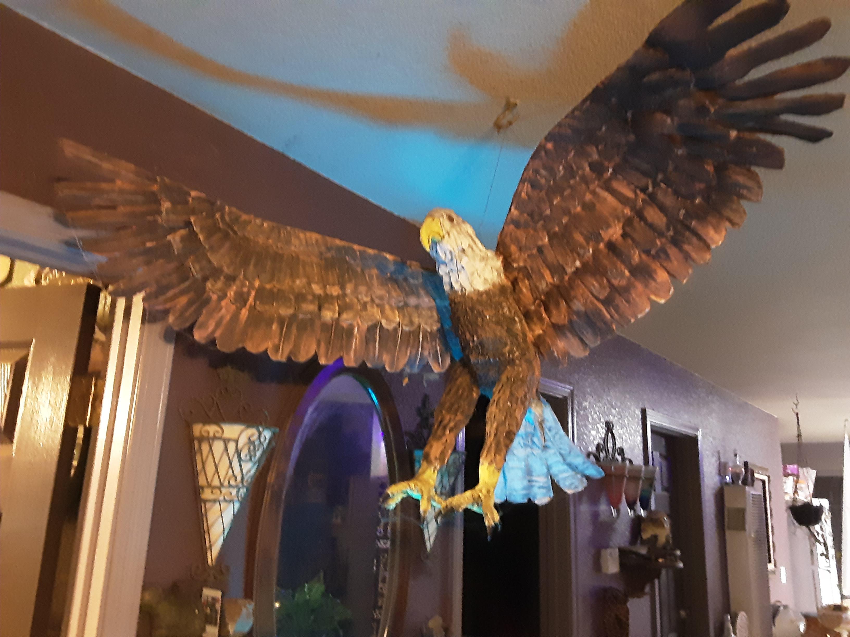 lori cole's eagle 2