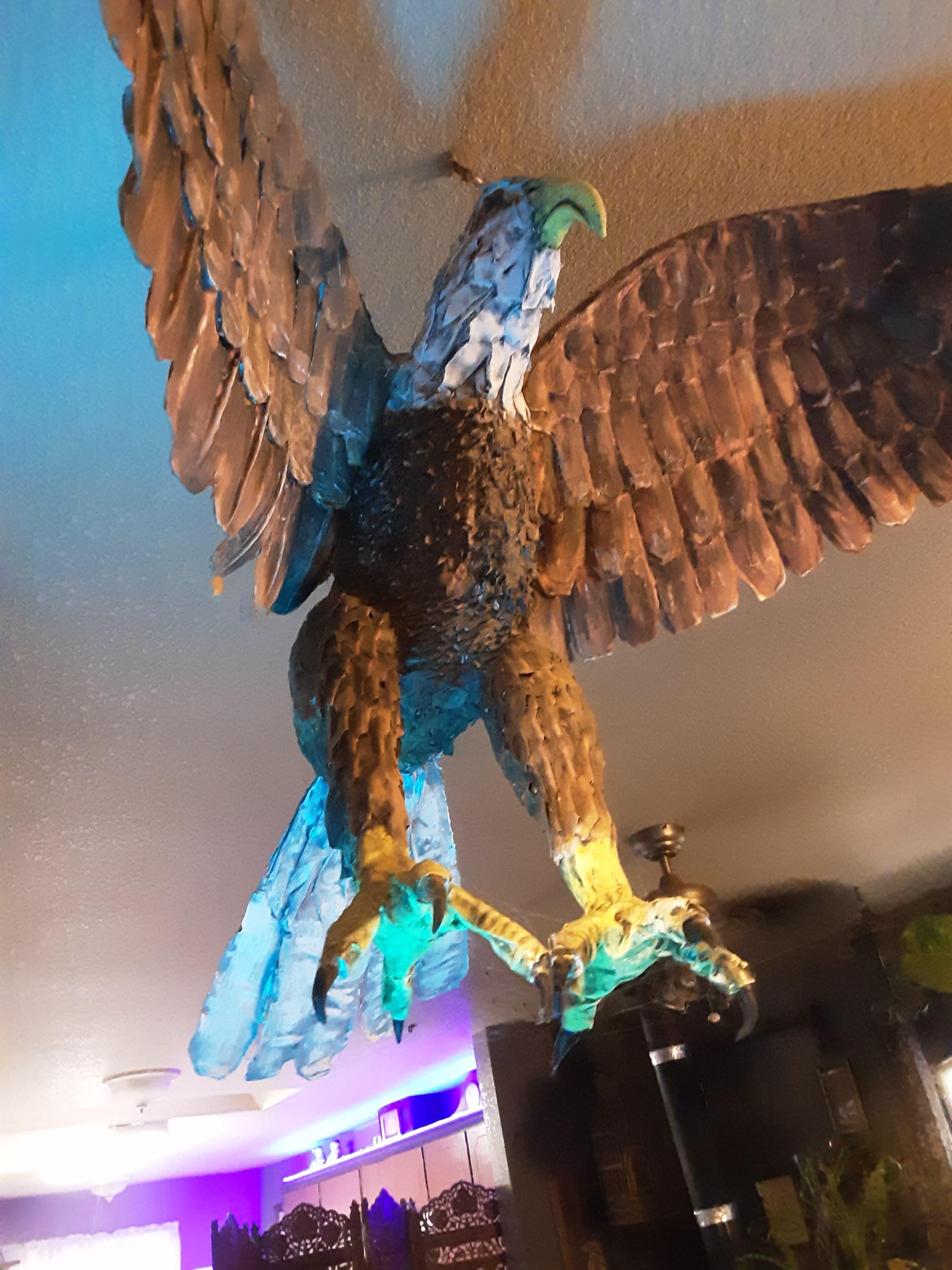 lori cole's eagle
