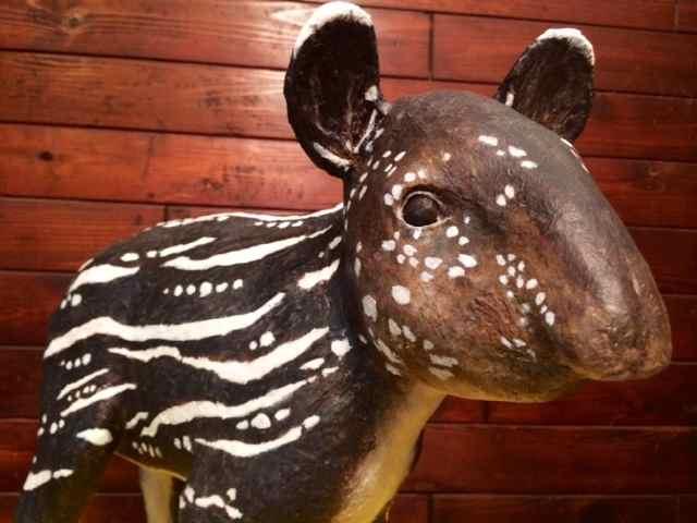 Susanne's paper mache tapir