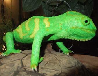 monis paper mache chameleon4