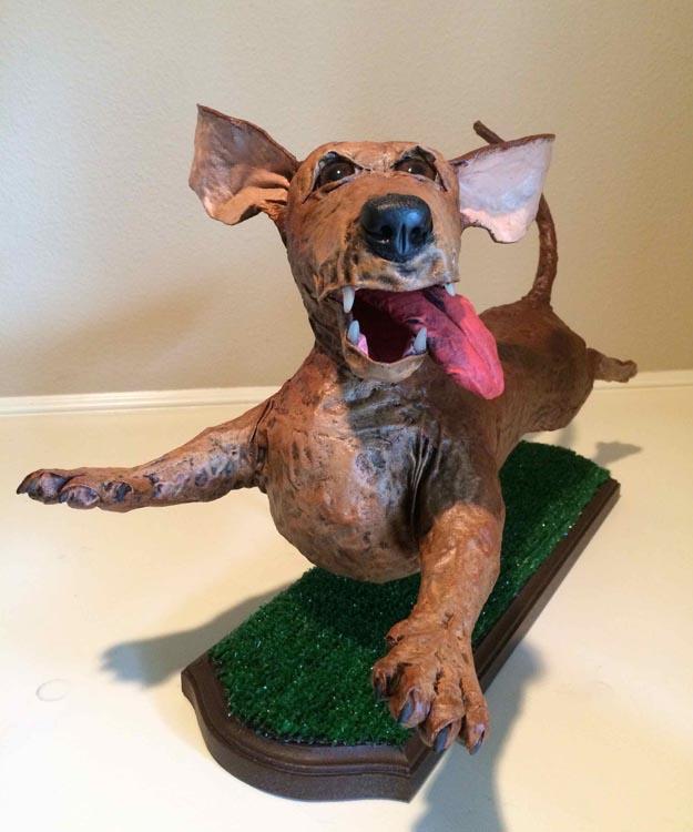 Teresa Sizemore's dachshund sam2