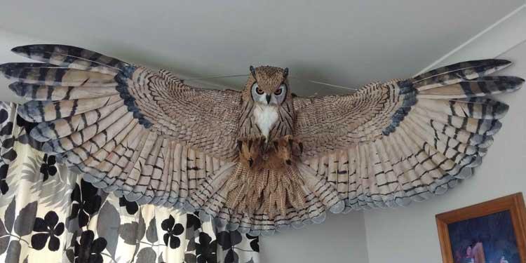 Glenn Berry's paper mache owl