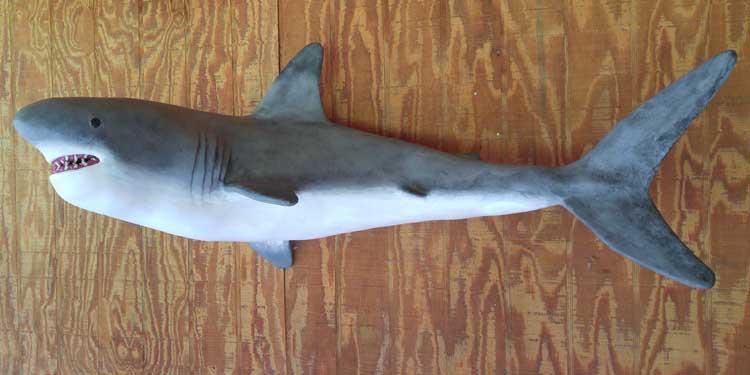 sarah reynold's paper mache shark