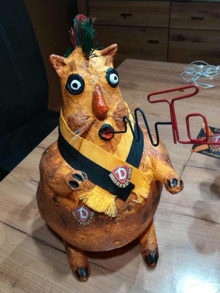 Uwe Morgenstern's soccer loving cat
