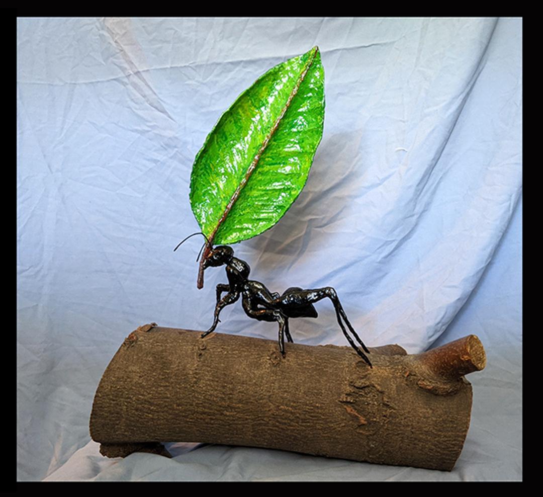 jon Keller The Mighty Ant